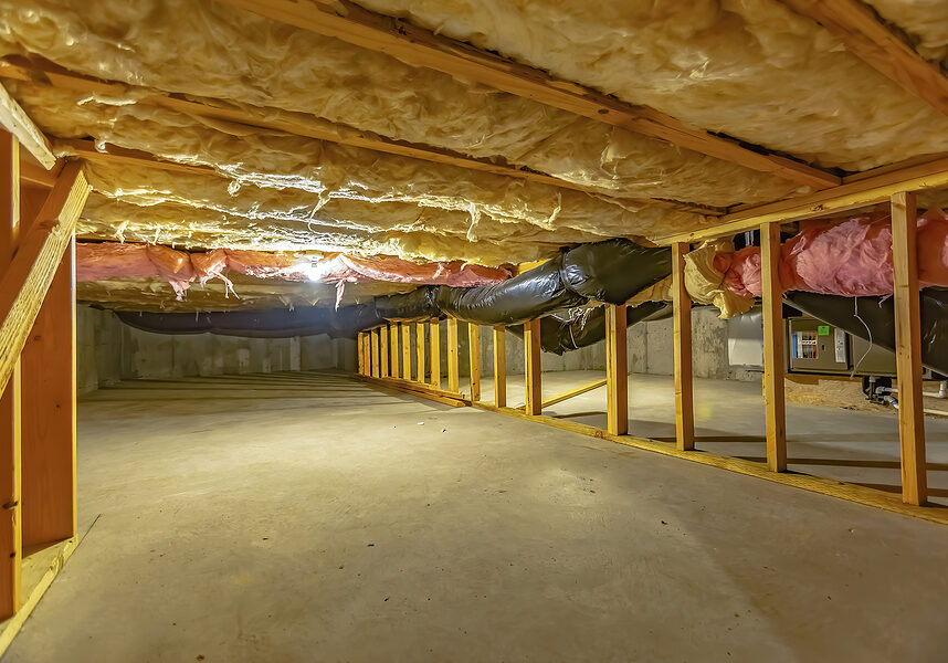 basement or crawl space with upper floor insulation and wooden support beams